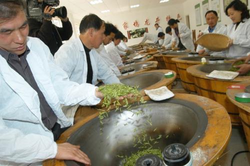Toplu yeşil çay üretimi