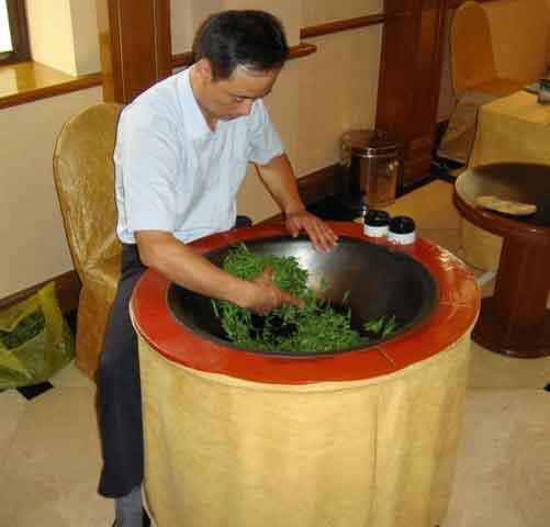 Yeşil çay üretimi