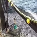 balık pompası suya indirilirken
